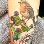 Rotkehlechen, Vogel tattoo von marielle